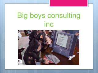 Big  boys consulting inc