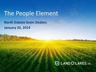 The People Element