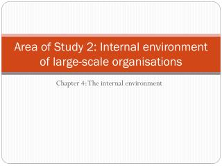 Area of Study 2: Internal environment of large-scale organisations