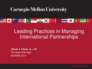 Leading Practices in Managing International Partnerships
