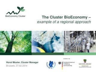 The Cluster  BioEconomy  – example of  a regional  approach