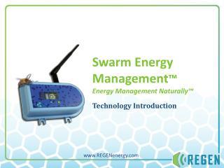 Swarm Energy Management � Energy Management Naturally�