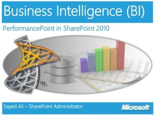 Business Intelligence (BI)