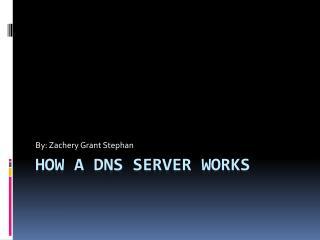 How a DNS server works