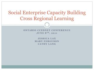 Social Enterprise Capacity Building Cross Regional Learning