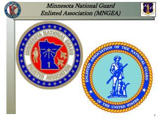 Minnesota National Guard  Enlisted Association (MNGEA)