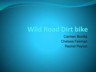 Wild Road Dirt bike