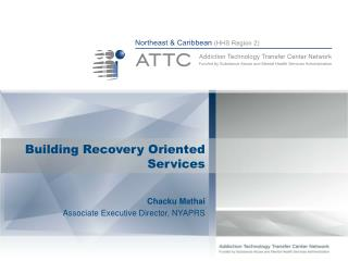 Building Recovery Oriented Services