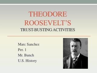 Theodore Roosevelt's Trust-Busting Activities