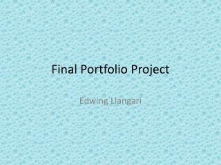 Final Portfolio Project
