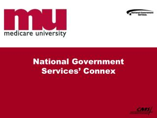 National Government Services' Connex