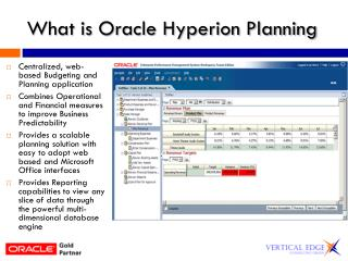 What is Oracle Hyperion Planning