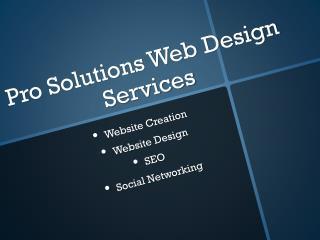 Pro Solutions Web Design Services