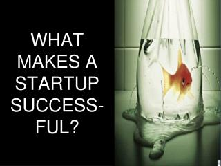 WHAT MAKES A STARTUP SUCCESS-FUL?