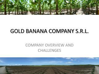 GOLD BANANA COMPANY S.R.L.