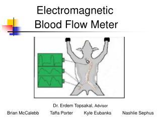 Electromagnetic             Blood Flow Meter                               Dr. Erdem Topsakal, Advisor  Br