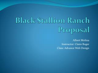Black Stallion Ranch Proposal