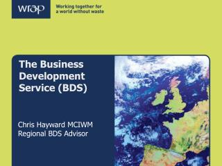 The Business Development Service (BDS)