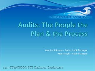 Audits: The People the Plan & the Process