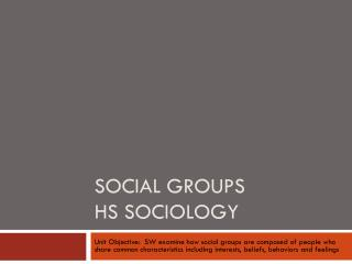Social Groups HS Sociology