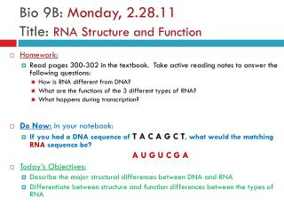Bio 9B:  Monday, 2.28.11 Title:  RNA Structure and Function