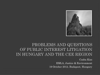 problems and questions  of public  interest litigation  in  hungary  and  THE  cee  REGION