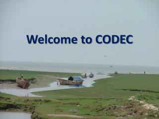 Welcome to CODEC