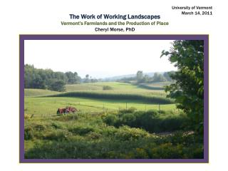 The Work of Working Landscapes Vermont's Farmlands and the Production of Place Cheryl Morse, PhD
