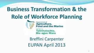 Business Transformation & the Role of Workforce Planning  Breffini Carpenter EUPAN April 2013