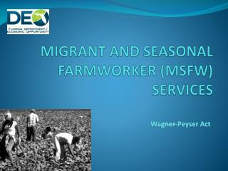 MIGRANT AND  SEASONAL FARMWORKER (MSFW) SERVICES