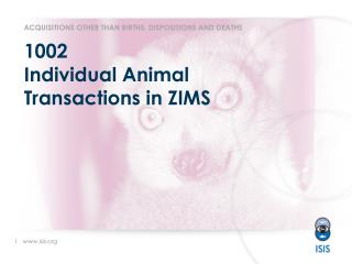 1002 Individual Animal Transactions in ZIMS