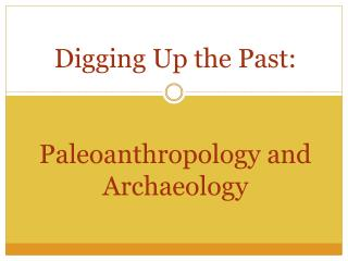 Digging Up the Past:  Paleoanthropology and Archaeology