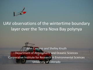 UAV observations of the wintertime boundary layer over the Terra Nova Bay  polynya