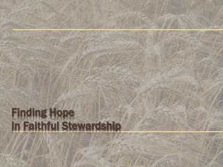 Finding Hope  in  Faithful  S tewardship