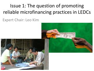 Issue 1 : The question of promoting reliable  microfinancing  practices in LEDCs