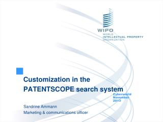 Customization in the PATENTSCOPE search system