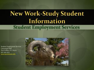 New Work-Study Student  Information