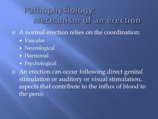 Pathophysiology : 				Mechanism of an erection