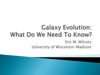 Galaxy Evolution: What Do We Need To Know?