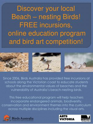 Discover your local  Beach – nesting Birds!  FREE incursions,  online education program  and bird art competition!