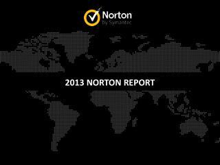 2013 NORTON REPORT