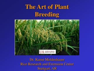 Dr. Karen Moldenhauer Rice Research and Extension Center Stuttgart, AR