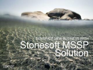 Stonesoft  MSSP Solution