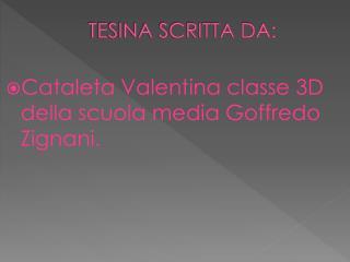 TESINA SCRITTA DA: