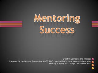 Mentoring Success