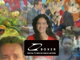 Boxer i korthet