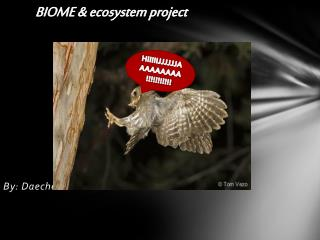 BIOME & ecosystem project By: Daechelle Green