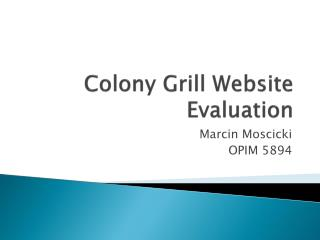 Colony Grill Website Evaluation