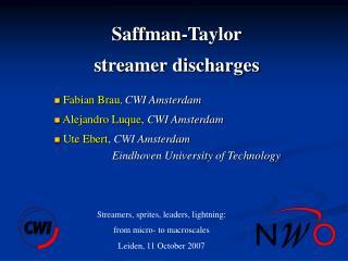 Saffman-Taylor  streamer discharges