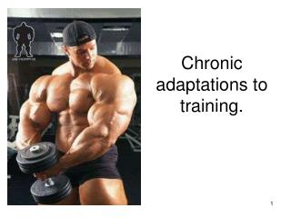 Chronic adaptations to training.